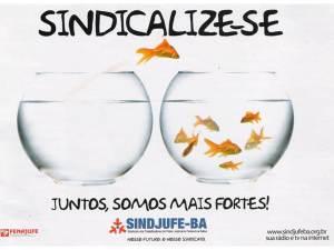 peixe SINDICALIZE-SE