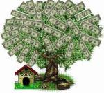 dinheiro em árbores