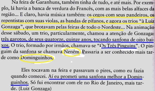 Gonzaga, Dominguinhos, fl192
