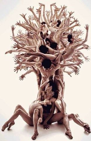 árvore de gente, Grace, Facebook